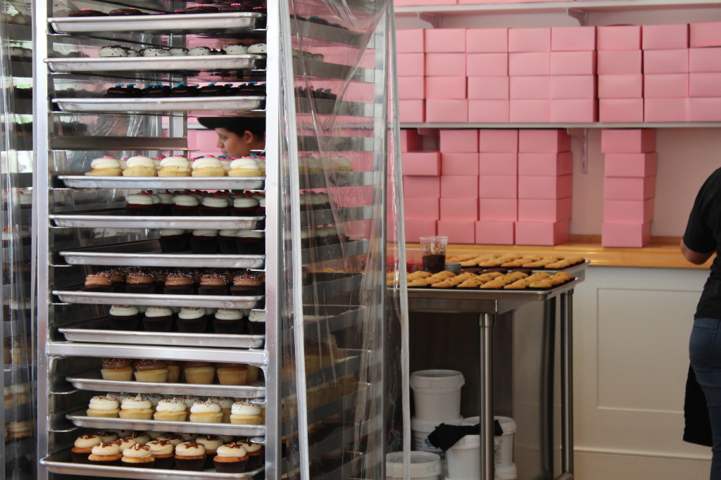 Georgetown Cupcake | Strength and Sunshine