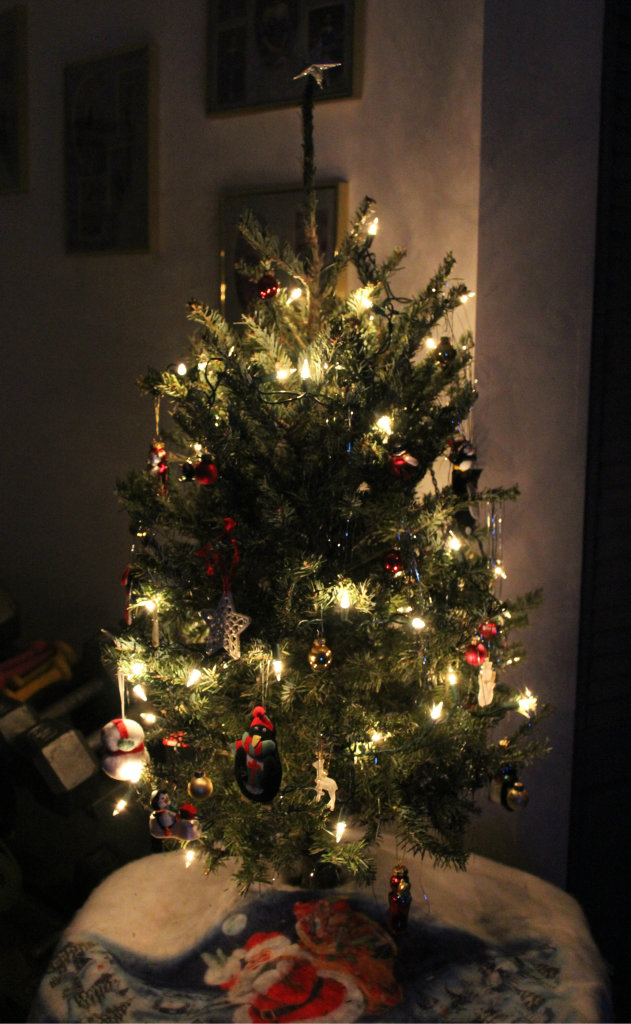 Little Real Tree | Strength and Sunshine @RebeccaGF666 #christmas