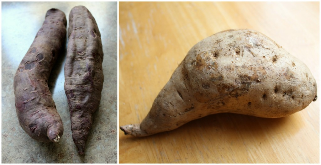 Purple Sweet Potato vs Okinawan Sweet Potato | Strength and Sunshine @RebeccaGF666