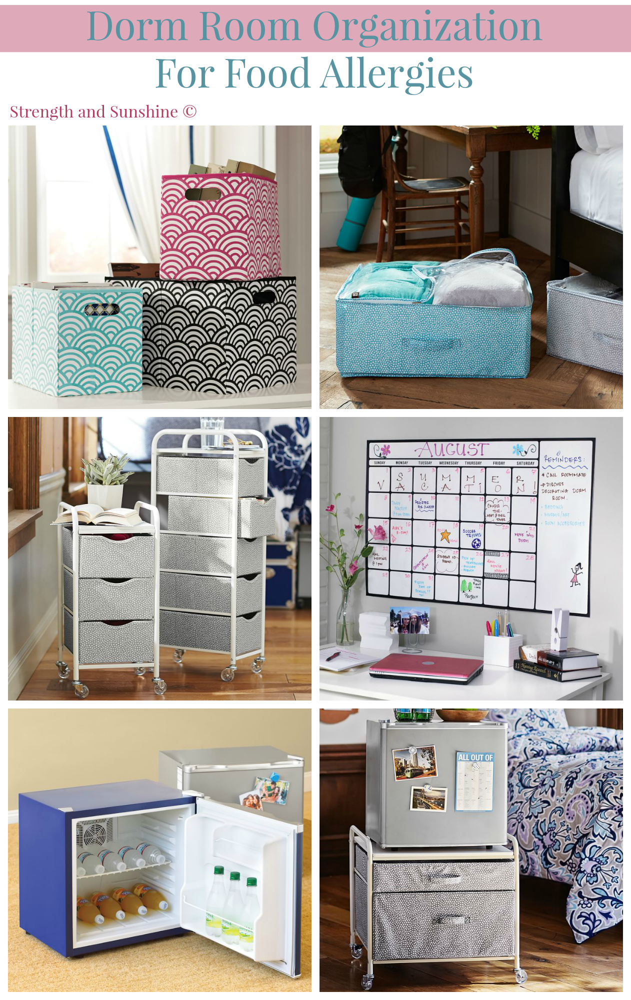 Dorm room organization for food allergies strength and - College dorm storage ideas ...