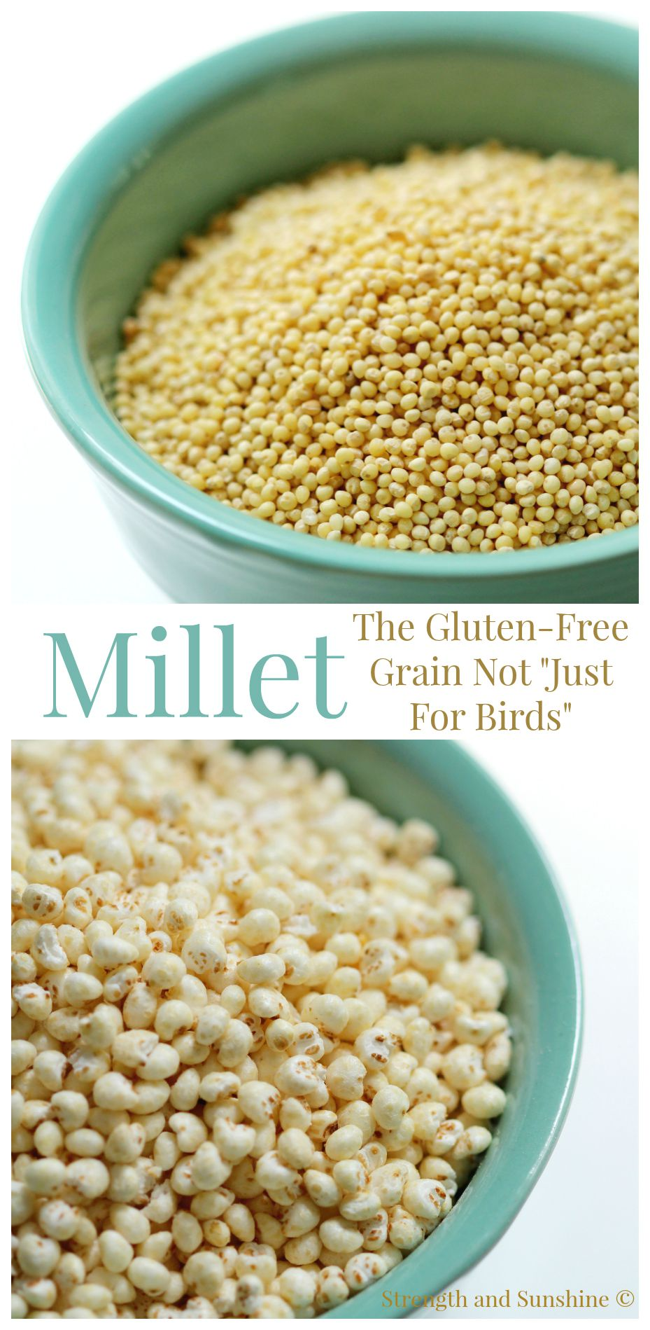 "Millet: The Gluten-Free Grain Not ""Just For Birds"" 