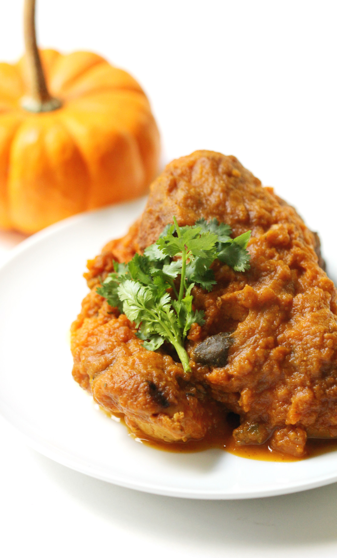 Slow Cooker Chipotle Pumpkin Chicken | Strength and Sunshine @RebeccaGF666 The season of slow cookers and pumpkins is in full swing, so combine the two for one delicious healthy dinner! Slow Cooker Chipotle Pumpkin Chicken is a creamy spicy new way to have a great gluten-free and paleo dinner with minimal effort and all the flavor!