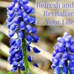 7 Gentle Things To Refresh and Revitalize Your Life
