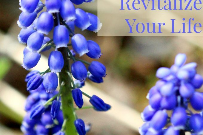 7 Gentle Things To Refresh and Revitalize Your Life | Strength and Sunshine @RebeccaGF666 We all need gentle things that can help us refresh and revitalize our lives when we get stuck in a slump or lose sight of our purpose. Here are 7 gentile things that will help you get the spark back into your life!
