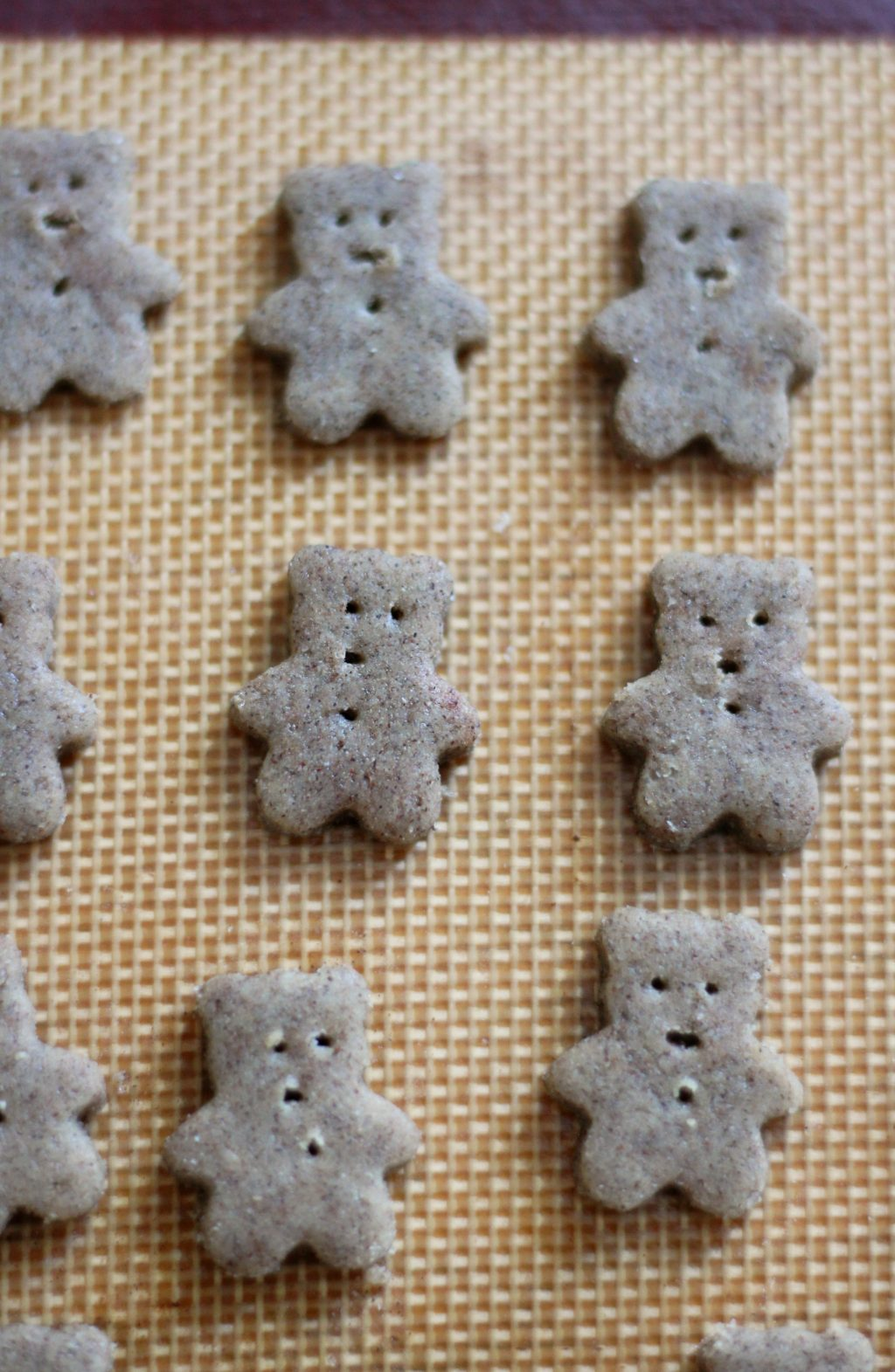 Homemade Gluten-Free Teddy Grahams (Vegan, Allergy-Free) | Strength and Sunshine @RebeccaGF666 A kid-friendly snack time favorite! Homemade Gluten-Free Teddy Grahams that are vegan, top-8 allergy-free, even sugar-free and whole grain! A recipe with options for different flavor variations, these adorable little bears with be gobbled up by little hands (and big ones too!) #teddygrahams #glutenfree #vegan #allergyfree #kidfriendly #kidfood #healthysnacks