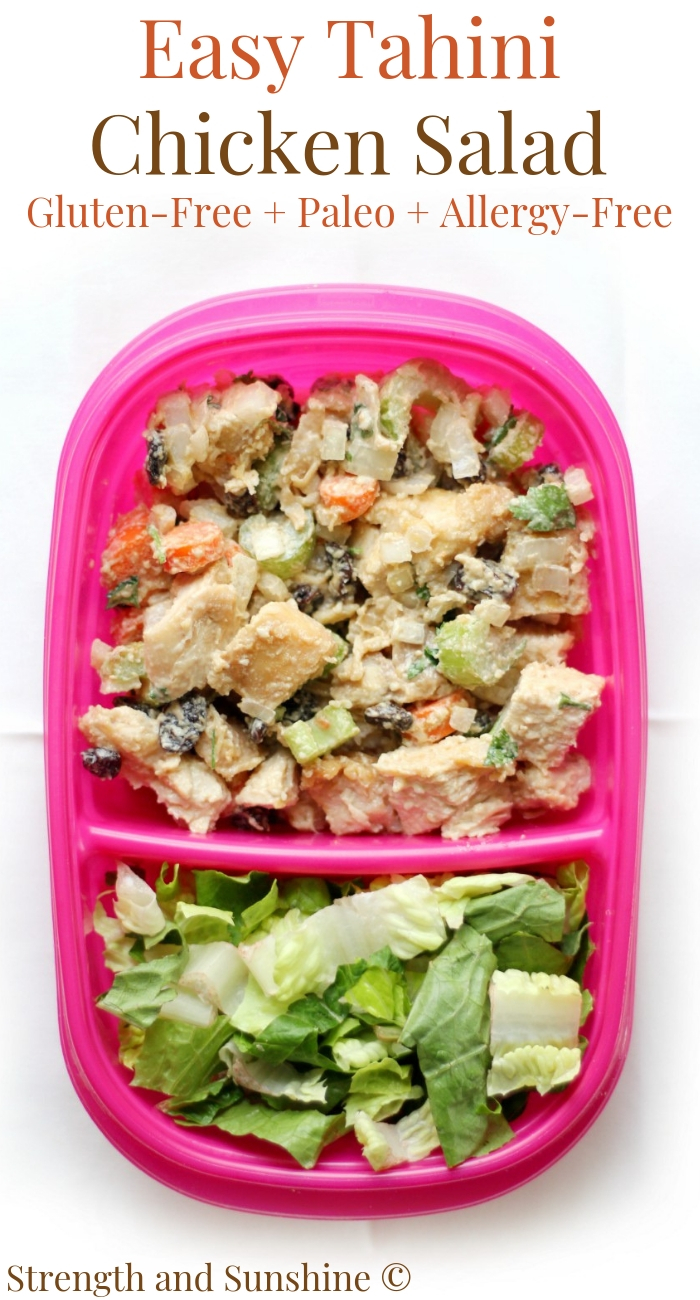 pink-meal-prep-tahini-chicken-salad-overhead-pin